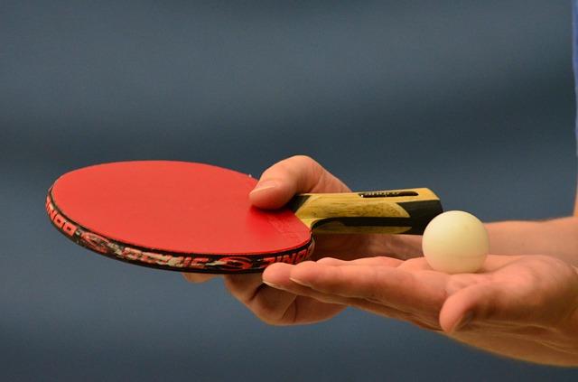 Die 5 besten Profi Tischtennisschläger – Test & Ratgeber