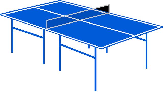 Die 5 besten Mini Tischtennisplatten 2021 – Test