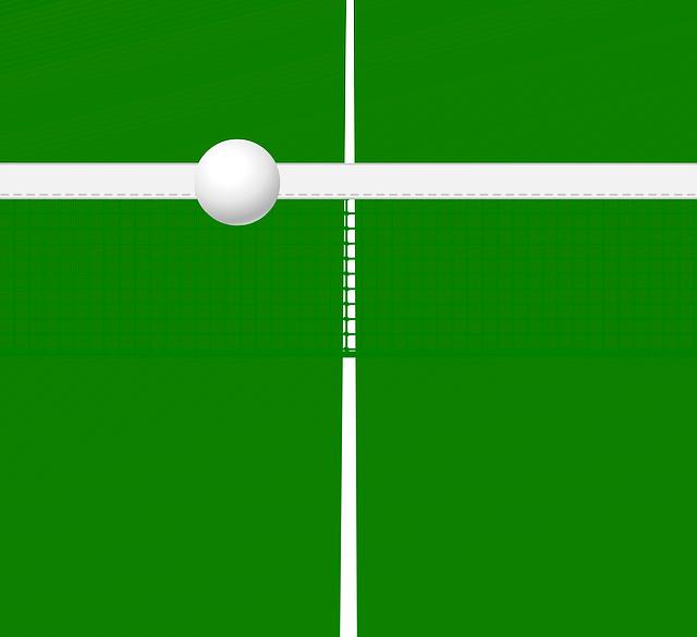 Die 5 besten Tischtennisnetze 2021 – Test & Ratgeber